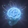 Как войти на форум - последнее сообщение от Brain